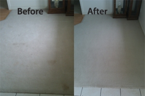 Carpet Before & After Pic